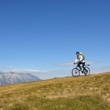 Active mountainbike tour Baiului Mountains - 1 day