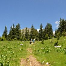 Active trekking tour in Bucegi Natural Park and Piatra Craiului National Park - 3 days - Bucegi Natural Park