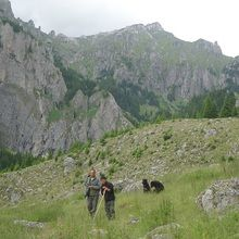 Active trekking tour in Bucegi Natural Park and Piatra Craiului National Park - 4 days - Valea Gaura
