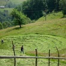 Active trekking tour in Bucegi Natural Park and Piatra Craiului National Park - 4 days - Mountain village