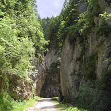 Small-Group Active trekking tour in National Park Piatra Craiului - 1 day - Zarnesti Gorges