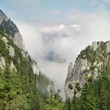 Private Active trekking tour in Piatra Craiului National Park  - 1 day - Curmatura saddle