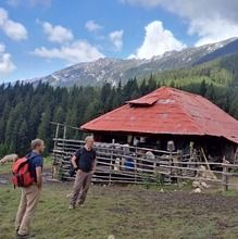 Private Active trekking tour in Piatra Craiului National Park  - 1 day - Sheepfarm in Curmatura meadow