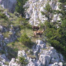Active trekking tour in National Park Piatra Craiului - 2 days - Are you still here?