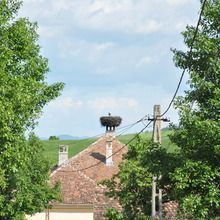 Day tour Medieval Sighisoara, Viscri, Rupea Fortress - Viscri village