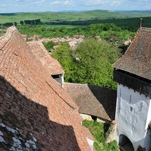 Day tour Medieval Sighisoara, Viscri, Rupea Fortress - Viscri - the village