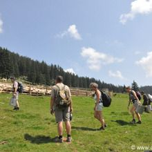 Adventure in Transylvania and Bear Watching - 7 days - Sheep farm in Transylvanian mountains