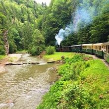 Highlights of Romania Private Tour - Transylvania, Maramures and Bucovina - 12 days round trip - The narrow gauge steam train into the Vaser Valley