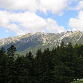 Private Active trekking tour in Piatra Craiului National Park  - 1 day - Main ridge of Piatra Craiului