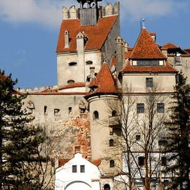 Small-Group day trip Bran Castle and Rasnov Fortress Tour from Brasov