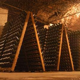 Rhein Azuga Cellar 1892 - Sinaia private day tour