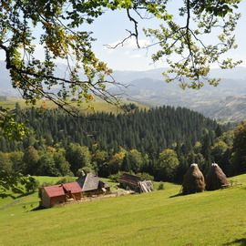 Small-Group Day tour in Romanian mountain villages